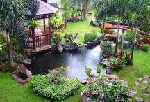 gardening - wet part