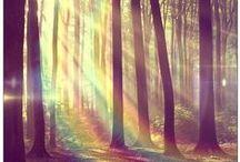 Beautiful / by Jenna Morrison-Seaton