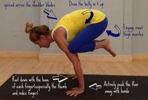 Yoga / by Elise Berning