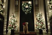 Christmas / by MAC Interior Designs
