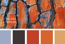Color! / by MAC Interior Designs