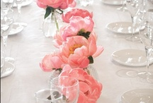 Centrepieces / by Cairns Wedding Planner