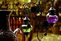 Garden / by Tina Lally