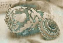 She Sells Seashells.......... / Seashells / by Cassie Koegl