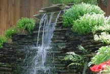 Garden ~ Water Features / by Cassie Koegl