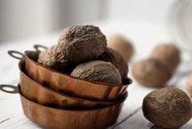 Noce Moscata - Nutmeg / La spezia delle meraviglie