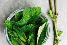 Menta - Mint / La pianta aromatica più fresca che c'è.