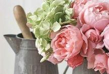 Fab Flowers / by Amy's Pins