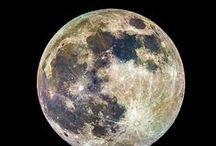 the Moon / by Marlon Paul Bruin