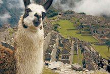 Sobre o Peru