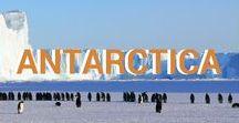 Travel   Antarctica / How to travel Antarctica   Must see Antarctica   Antarctica travel advice   Antarctica must do   Top things in Antarctica   Antarctica travel informatio