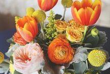 Fleurs / by Anne Lindberg