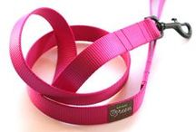 Dog Leashes / by PupLife Dog Supplies