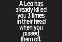 Feel words : Leo qualities