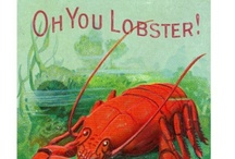 L is for Lobster / by Jim Stein