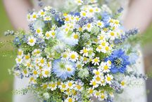 Flower: Wildflowers & Foliage / by Rose of Sharon Floral Designs
