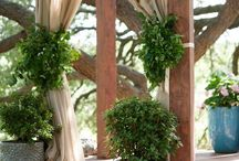 Inspirations: Ceremony Decor / by Rose of Sharon Floral Designs