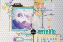 Scrapbooking Layouts / This is where i like to keep all of the amazing layouts i find on the WWW / by Caz Hancock