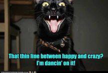 LOL!!  / by Elisabeth Redman