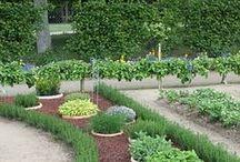 Garden / Outdoor living