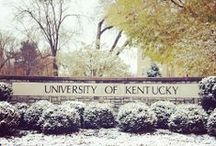 Wildcat Country / Photos that illustrate how beautiful UK's campus is.  / by University of Kentucky