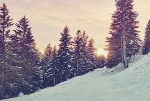 Winter wonderland / by Montana Gubrud