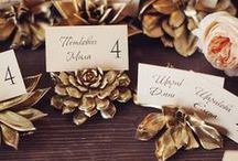 Escort Card Table / by Aisle Perfect - Wedding Blog