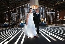 Dream Venues / Looking for the wedding venue of your dreams?  Me too!