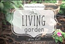 the living garden / Love my urban garden sanctuary, and I'm always looking for new ideas and inspiration for it. This board is all things outdoor & gardening. Chicago has short summers. Let's make the most of it! / by The Urban Domestic Diva (Flora C.)