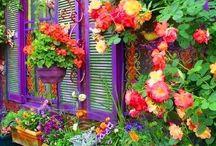 ~Rainbow Beauty~ / Rainbows - A Beautiful Reflection of God's Promise!