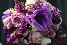 Flores & Casamentos