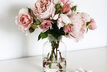 ♡ flower princess