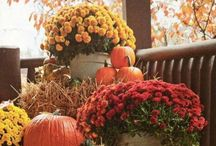 Thanksgiving / Thanksgiving decorating and craft ideas.  Yummy Thanksgiving recipes.