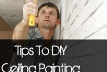 DIY Paint / How to paint and pretty painted furniture / by Betty J Roberts