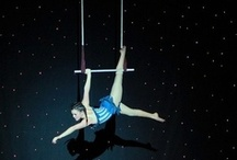 trapeze/tightrope/contortionists etc