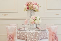 Wedding Details / Invites, Escort Card Tables, Linens, and all those little special touches that take an event to the next level.