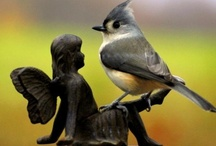 Bird Baths, Feeders,  Houses & Water Fountains / by Marlene Houser