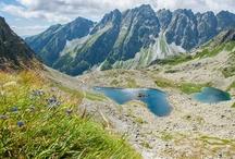 Spring in High Tatras - Jar vo Vysokých Tatrách