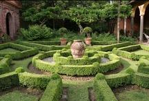 Gardens / by Eleanor Linton