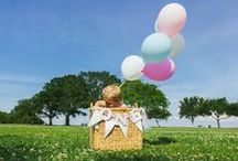 Shabby Chic/Hot Air Balloon 1st Bday / by Sarah E