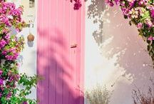Pretty in Pink / Pink can be delicate or daring in the garden.