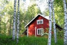 Finland / My homeland. These are things that remind me of my first home. / by Anne Mari