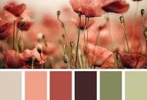 Art | Color Inspiration / by Tara Richardson