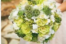 Clover Green and White Wedding / Using clover green and white for your wedding will give you a clean, crisp look. Great for weddings anytime of the year.