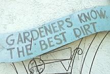 Gardening Ideas / by Felicia McNutt