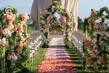Aisles and Altars / Decorate your aisle and altar in a way that reflects your unique personality and style as a couple - after all, the ceremony is the most important part.