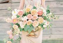 Color Palette: Peach / Peach wedding inspiration.