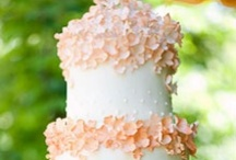 Beautiful Cakes / I should have been a baker, but I'll just look at these cool pictures instead!