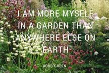 Gardening Quotes / Inspiring gardening quotes and quotes about nature for the gardener in us all. Enjoy! / by Proven Winners Plants