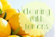 Clean My House